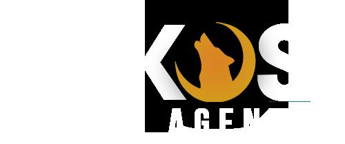 Lykos Agency - Agence de Communication et Image de Marque